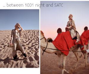 wüste, wueste, abu, dhabi, satc, vae, emirates, reise, travel, blog, blogger, münchen, fashionblogger, modeblogger, fotoshooting, sunset, sonnenuntergang, sand, lifestyle, kamel
