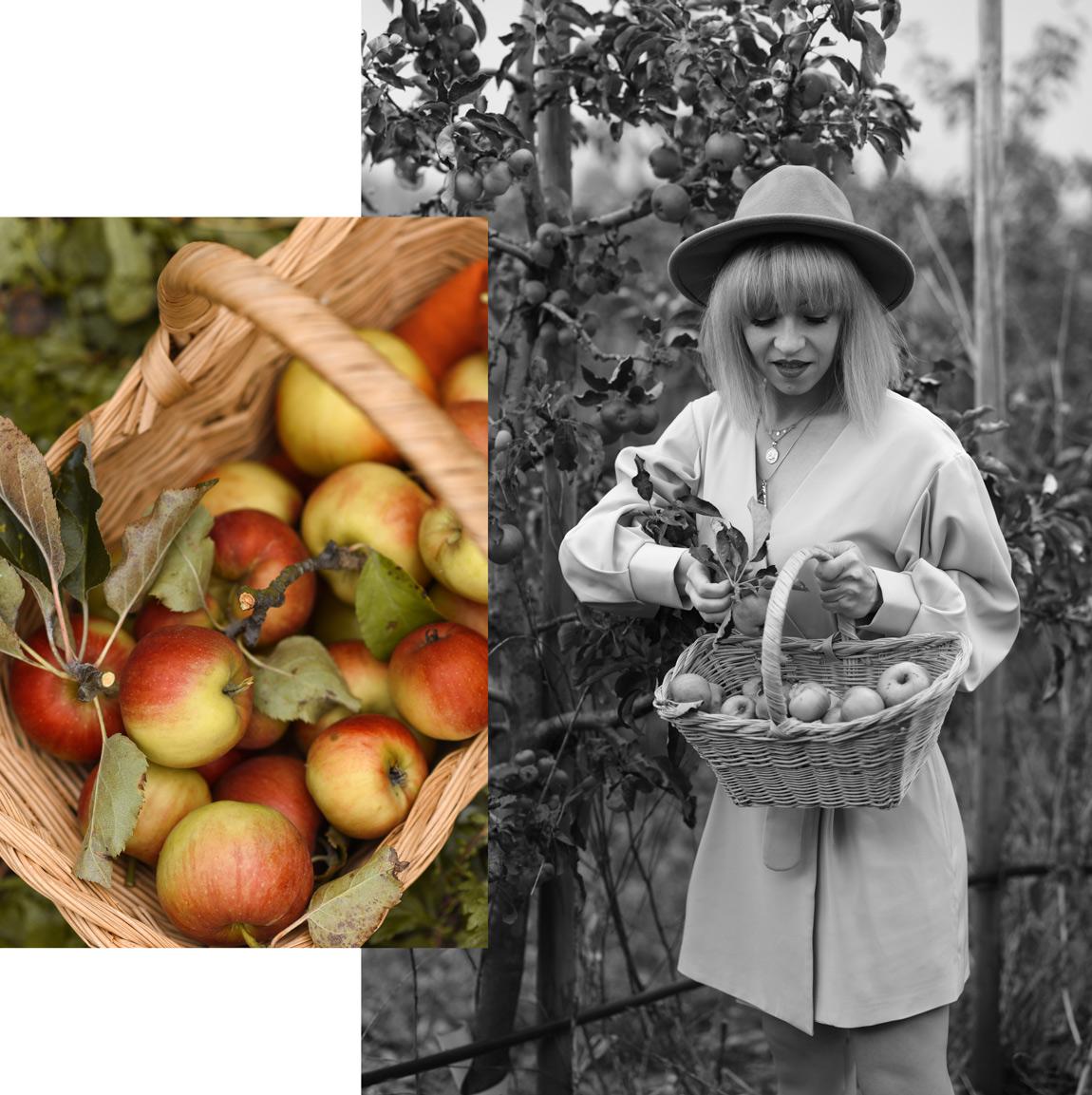 äpfel, schwäche, sünden, life, update, berlin, apfelernte, brandenburg, berlin, natur, herbst, fall, autumn, inspiration, blogger, lifestyle, blog, fashionblog, modeblog