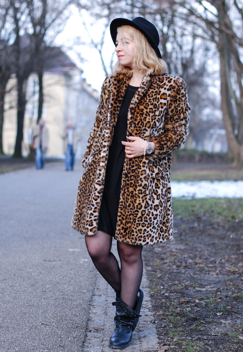 leopard5 (1 von 1)