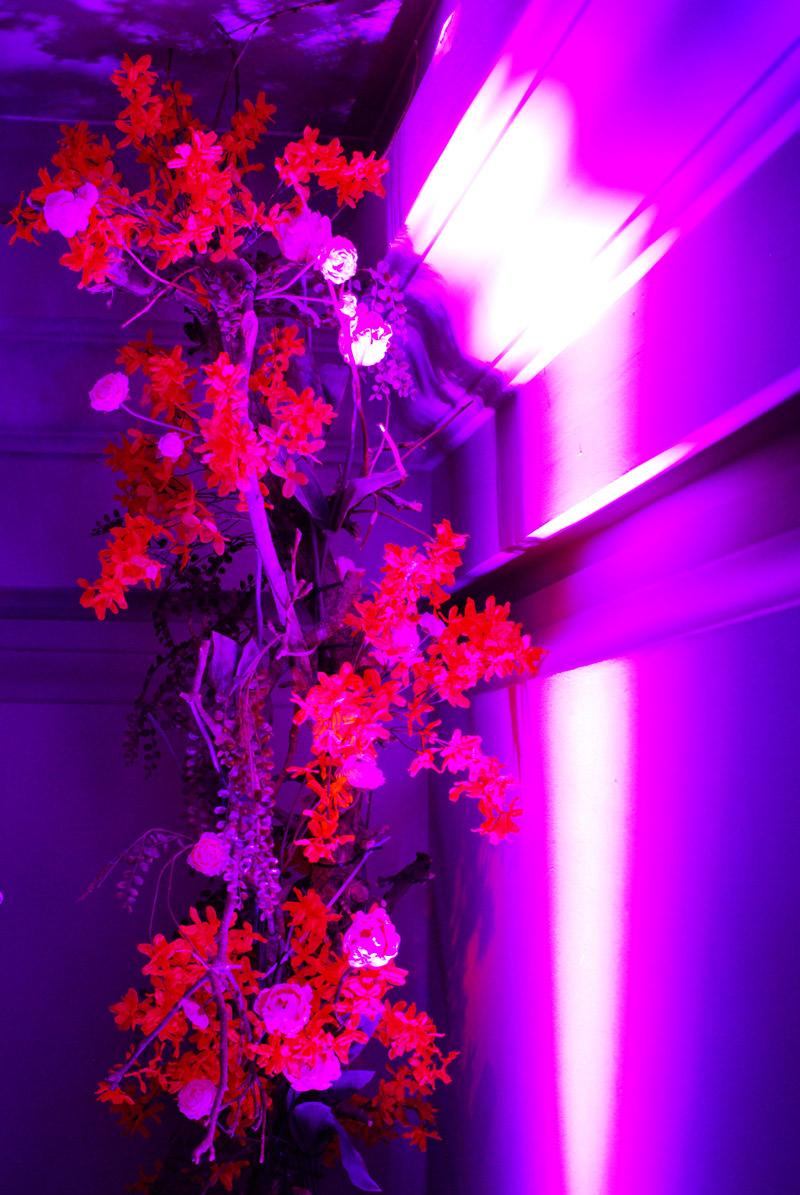 florals-interior-event-party-ciroc-masquerademe-munich-muenchen