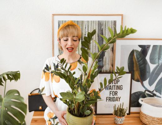 grüner, daumen, pflanzen, home, living, interior, einrichtung, berlin, blogger, blog, lifestyle, boho, bohemian, zuhause, poster